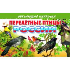Карточки. Перелетные птицы России