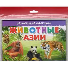 Карточки (европодвес). Животные Азии