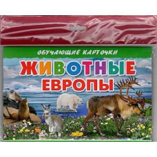 Карточки (европодвес). Животные Европы