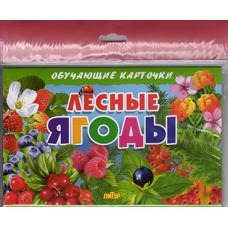 Карточки (европодвес). Лесные ягоды