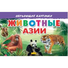 Карточки. Животные Азии