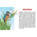 Карточки (европодвес). Перелетные птицы России