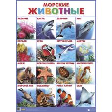 Плакат. Морские животные
