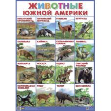 Плакат. Животные Южной Америки