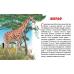 Карточки (европодвес). Животные Африки